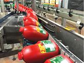 lay down conveyor